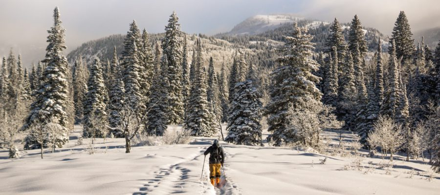 Cross-Country Skiing in Steamboat Springs, Colorado
