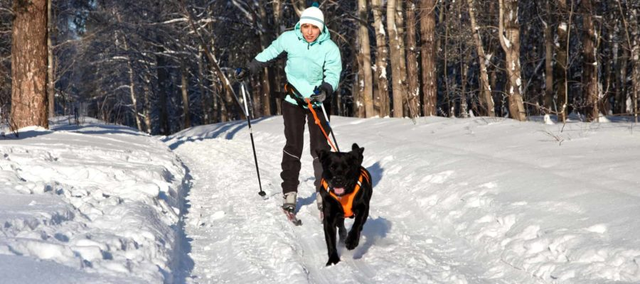Cross-Country Skiing at Mountain Top Inn and Resort